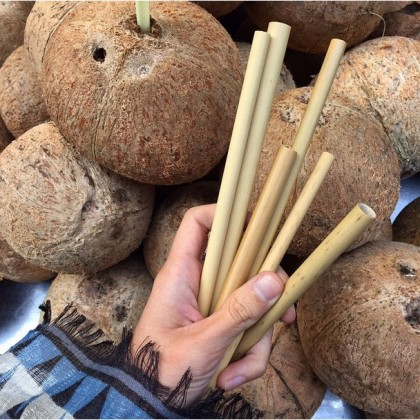 Big Bamboo Straw For Bubble Tea Handmade Eco-Friendly & Reusable ~ An End to Plastic