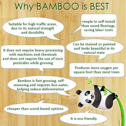 EcoQuote iPhone 7 / 8 Plus Bamboo + Hard PC Phone Case Finishing For Vegan