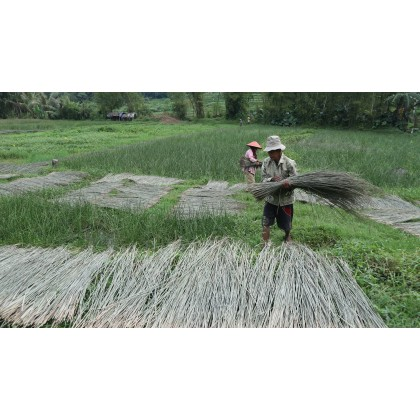 Purun Grass Oval Picnic, Shopping Basket, Handmde Eco-Friendly & Sustainable