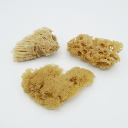 Natural Sea Sponge Pack of 3 Shower Bath Deep Cleaning Smoothing Skin Sustainable, Eco & Vegan-friendly