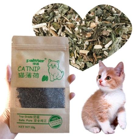 Organic Catnip Natural Cat Mint 10g Pack Cat Mint Menthol Flavor Cat Treats Funny Toy